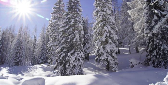 Ski Adventure